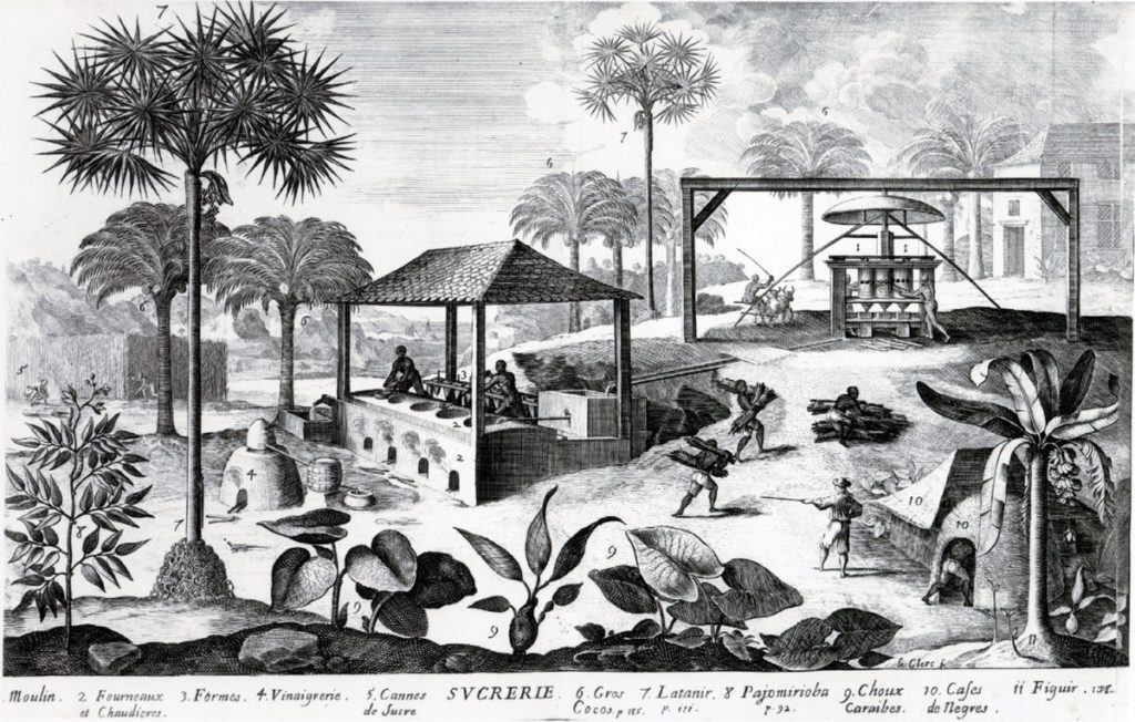 A plantation on Saint-Domingue (Haiti), where Napoleon supported the abolition of slavery
