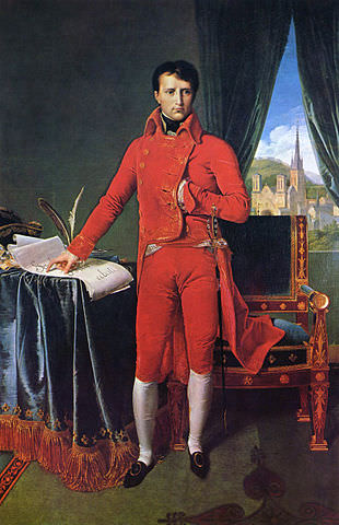 Napoleon as First Consul, by Jean-Auguste-Dominique Ingres. Napoleon is hiding one of his beautiful hands (see Napoleon Bonaparte facts, #6.)