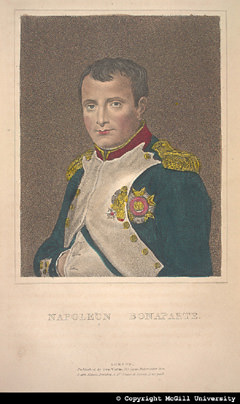 Napoleon Bonaparte, based on the portrait by David, copyright McGill University