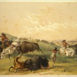 A Buffalo Hunt & Other Buffalo History Tidbits