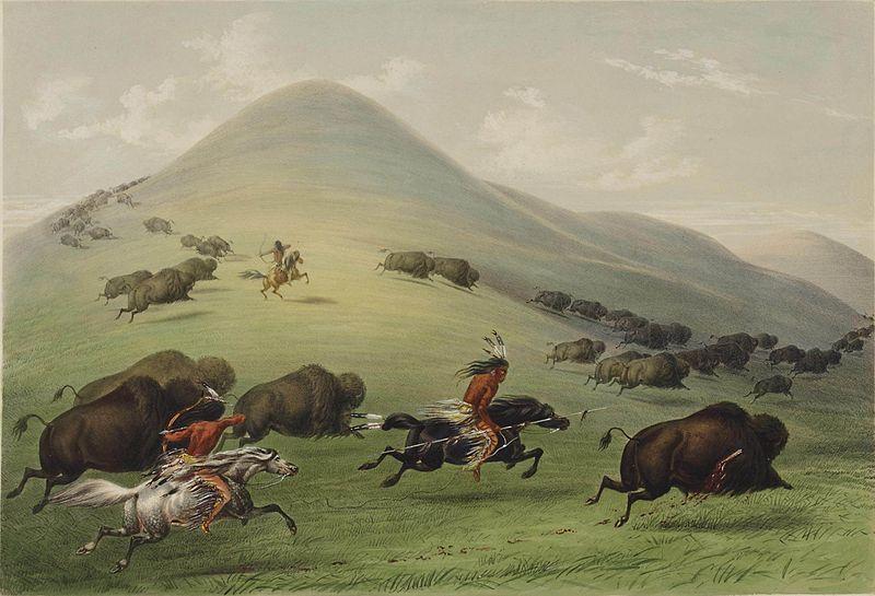 Buffalo Hunt, by George Catlin, 1844