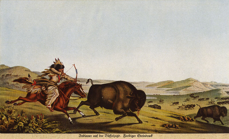 Assiniboine Hunting the Buffalo, by Peter Rindisbacher, 1836