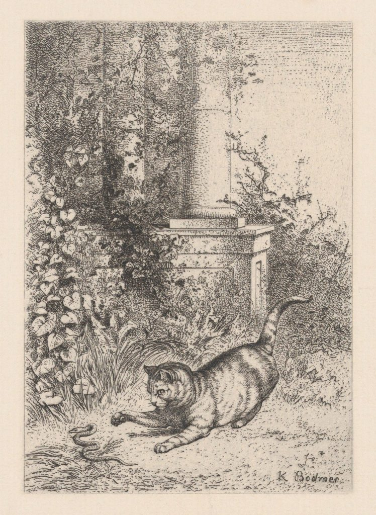 A cat playing with a garter snake, by Karl Bodmer, 1860. Source: The Metropolitan Museum of Art, The Elisha Whittelsey Collection, The Elisha Whittelsey Fund, 1959